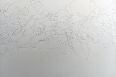 2012-Vida-Sketches-13-light